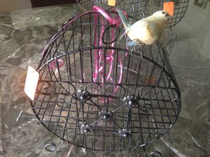 Birds cage for Sale in Highland Heights, OH