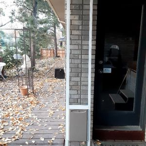 Dog Door Incert Used For A Day for Sale in Wheat Ridge, CO