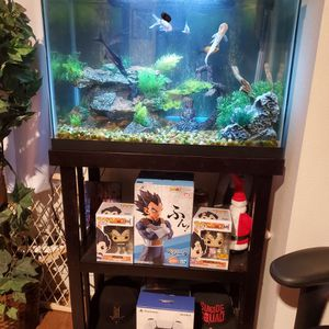 25 Gallon Tank, Filter, Heater & Fluval Rgb Light for Sale in Fontana, CA