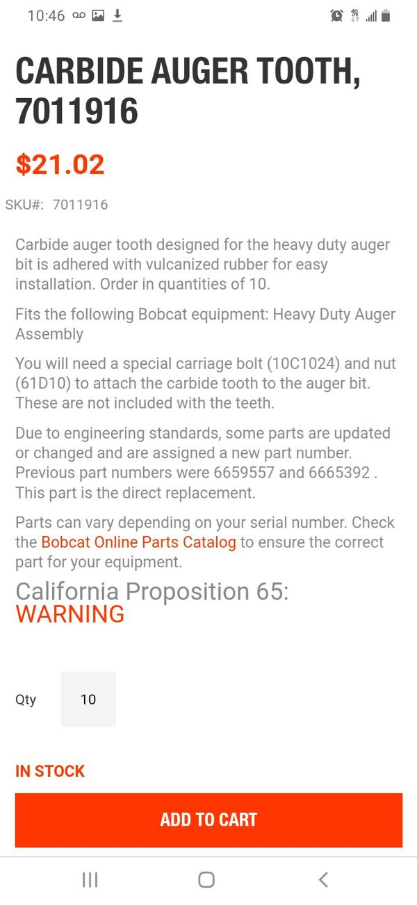 Bobcat teeth R201