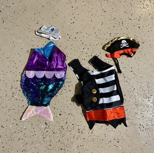 Guinea Pig or small animal Halloween costumes for Sale in San Diego, CA