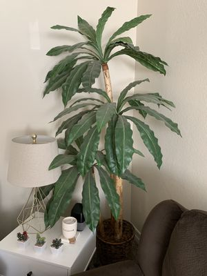 6ft Potted artificial fake plant tree home decor for Sale in Claremont, CA