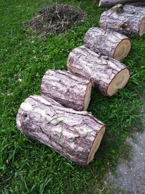 Free wood for Sale in Raytown, MO