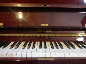 Petrof Piano in great shape (pickup only) for Sale in Wichita, KS