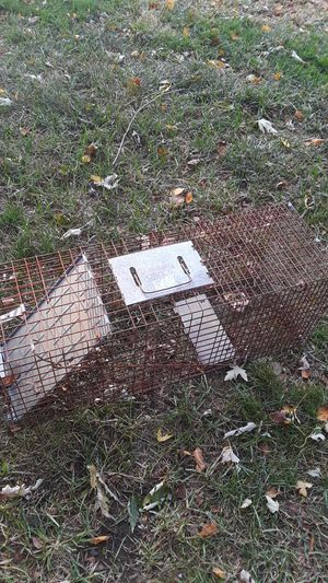 Animal live trap for Sale in Greenwood, IN