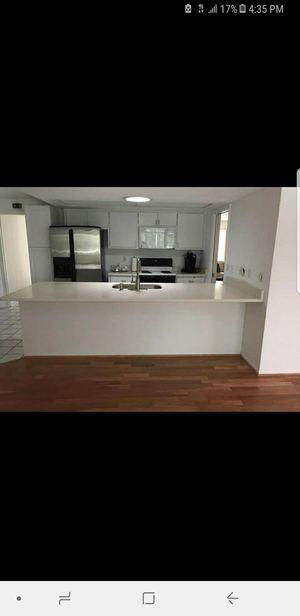 Kitchen..cabinets and granite..free stimate for Sale in Tampa, FL