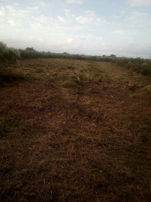 Land for Sale in Port Lavaca, TX