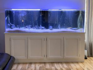 200 gallon acrylic with fx6 for Sale in West Covina, CA