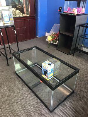 40 gallon Breeder turtle reptile fish tank and filter combo $100 for Sale in Philadelphia, PA