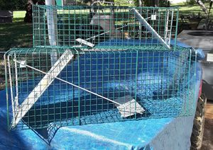 Live animal catch n release trap for Sale in Hudson, FL