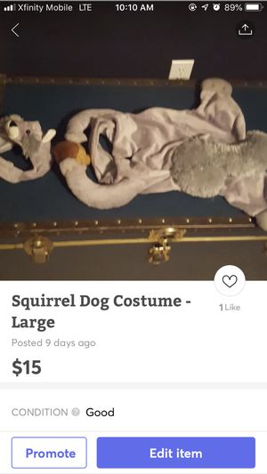 Squirrel Dog Halloween Costume Large for Sale in Houston, TX