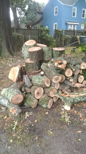 🔥 wood for Sale in Norfolk, VA