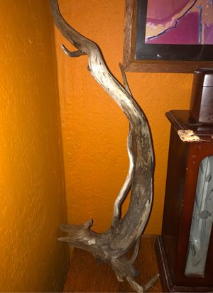 Drift wood, cool shape, pet and/or art decor for Sale in Madison, WI