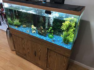 55 Gallon Fish Tank-All Decor Included for Sale in Sebring, FL