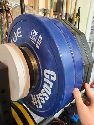 Rogue 45lb Color Training Olympic Gym Weight Plates for Sale in Newport News, VA
