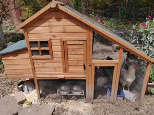 Chicken coop with 4 chickens for Sale in Happy Valley, OR