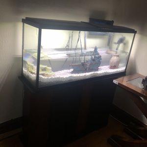 Fish Tank for Sale in Cicero, IL