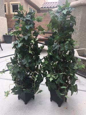 Topiary plants pair for Sale in Las Vegas, NV