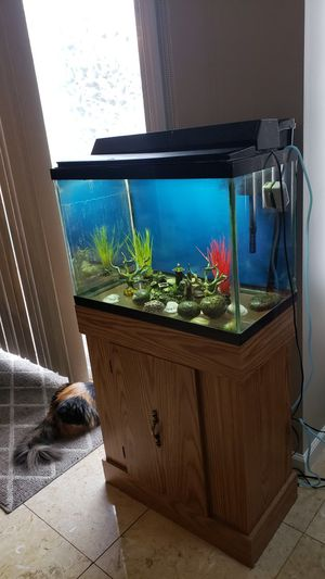 Aquariam for Sale in Dearborn, MI