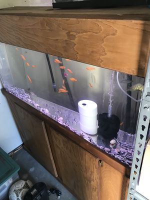 Acrílic fish tank 60 gallons!!!!! for Sale in Irwindale, CA