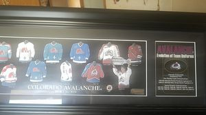Avalanche display for Sale in Delta, CO
