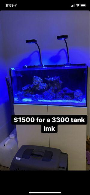 Fish Tank for Sale in Boston, MA