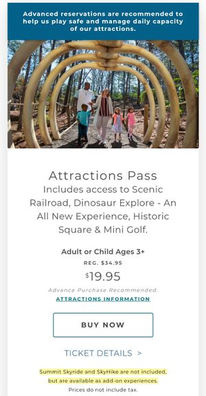 Stone mountain park all-attraction pass for Sale in Decatur, GA