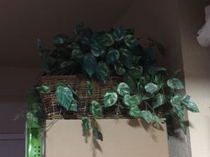 Basket fake plant for Sale in Folsom, CA