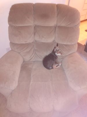 Recliner not dog for Sale in Aloha, OR