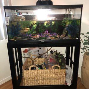 Fish/ Reptile Tank for Sale in Norwalk, CA