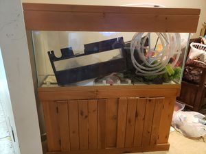 50 gal fish tank setup for Sale in Haines City, FL