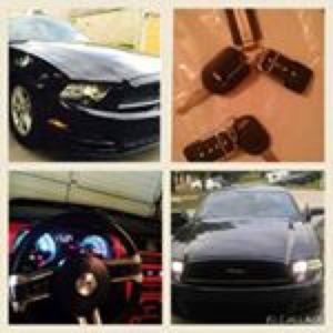2014 Ford Mustang for Sale in Grosse Pointe Park, MI