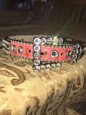Female crystal dog collar for Sale in Milton, MA