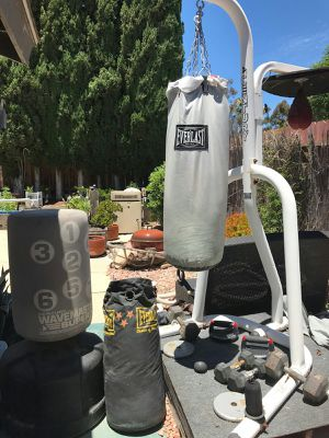 Everlast Heavy Bag Speed Bag Station for Sale in San Diego, CA