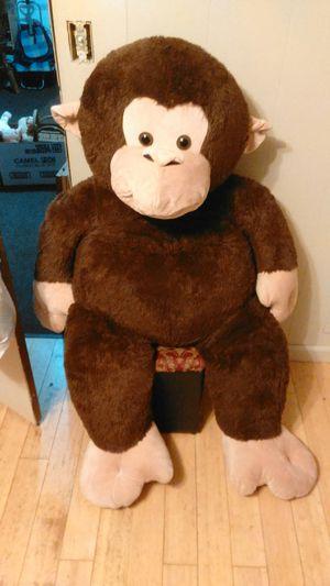 Monkey for Sale in Traverse City, MI
