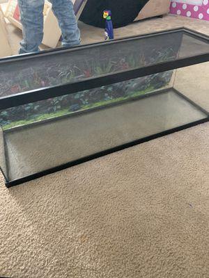 Fish or reptile tank with accessories for Sale in Murrieta, CA