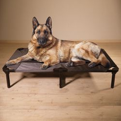 Gray Riser Pet Beds Brand New $45 &up Shipping Available for Sale in Beaverton,  OR