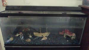 Black 55 gallon fish tank for Sale in Jefferson City, MO