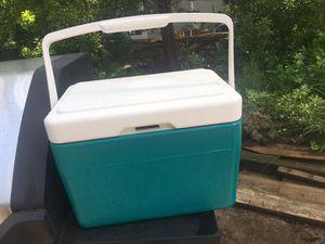 Small cooler for Sale in Alexandria, VA