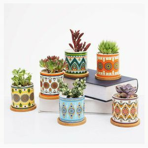 Succulent Plant Pots for Sale in Portland, OR