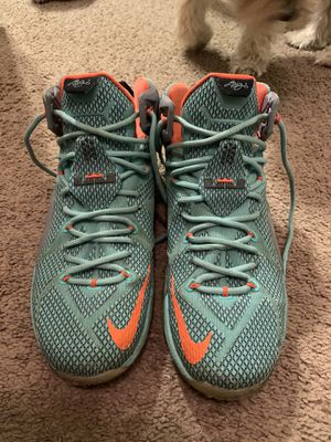 Lebron James 10.5 Nike's for Sale in Orlando, FL