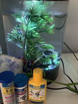 Fish Tank For Sale With Supplies And Decor for Sale in San Diego,  CA