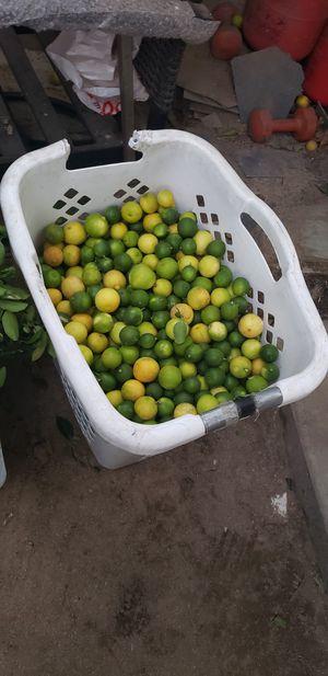 Free lemons for Sale in Bellflower, CA