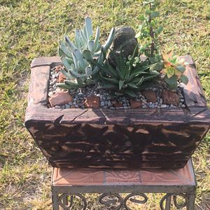 Rustic Wood Vase With Variety Of Succulent for Sale in Fontana, CA
