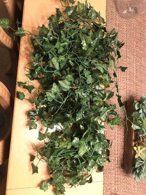 Fake vine plant for Sale in Brandon, FL