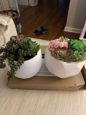 Succulent plants fake set of two for Sale in Avon, OH