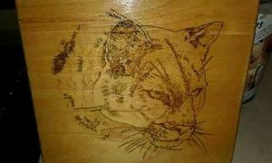 Woodburned Art for Sale in Payson, AZ