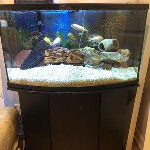 50 gal Fish Tank Aquarium for Sale in Park Ridge, IL