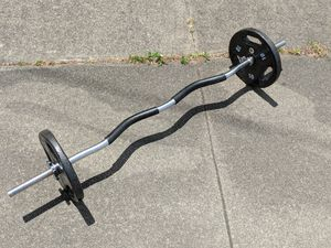 Standard threaded curl bar with two 10 lb plate weights for Sale in San Francisco, CA