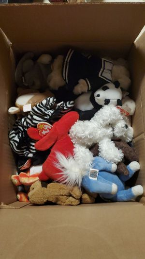 Full box of Beanie Babys. All with tags and clean for Sale in Brighton, CO